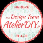 Design Team TOGA
